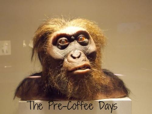 Pre-Coffee